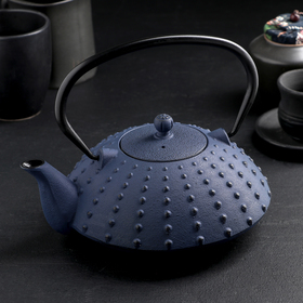 {{photo.Alt || photo.Description || 'Чайник «Байсан», 1 л, с ситом, цвет синий'}}