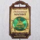 """Magnet """"Nizhniy Tagil"""""""