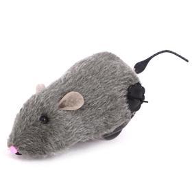 Заводная игрушка «Мышонок», МИКС