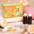 """Набор для создания жидкого мыла """"Яблочный штрудель"""""""