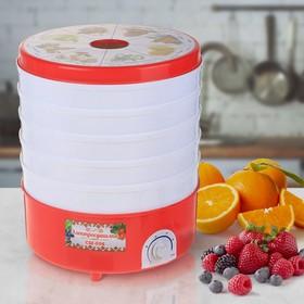 """Сушилка для овощей и фруктов """"Чудесница"""" СШ-006, 520 Вт, 5 ярусов, красно-белая"""