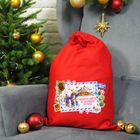 Мешок Деда Мороза «Экспресс-почта», 40 х 60 см
