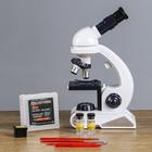 Microscope x 80-450, C2129 batteries