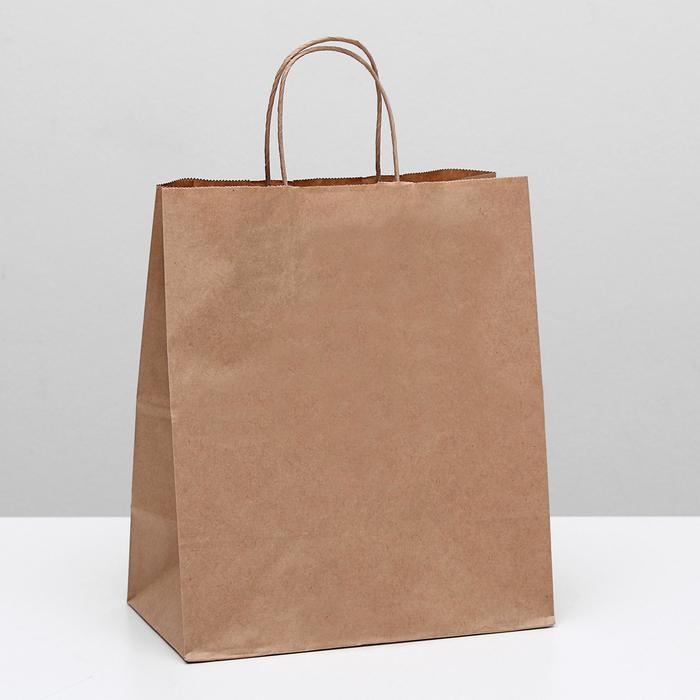 Пакет крафт без печати, круглая ручка 24 х 14 х 28 см - фото 308279964