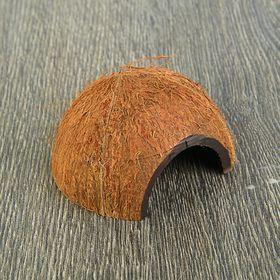 Скорлупа кокосовая 1/2, для рептилий и грызунов, L, микс Ош