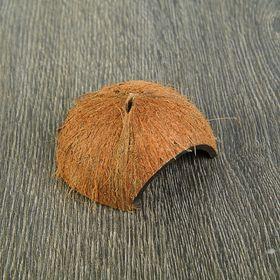 Скорлупа кокосовая 1/2 для рептилий и грызунов, M, микс