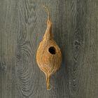 Декоративное гнездо Nest Medium