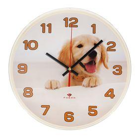 """Часы настенные, серия: Животный мир, """"Золотистый ретривер"""", """"Рубин"""", 25х25 см"""