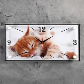 """Часы настенные, серия: Животный мир, """"Котик"""", 19х39 см"""