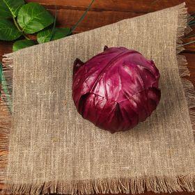 "Dummy ""Red cabbage"""