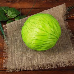 """Dummy """"cabbage"""""""