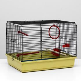 """Клетка для птиц """"Грация"""", 49 х 36 х 37 см, микс цветов"""