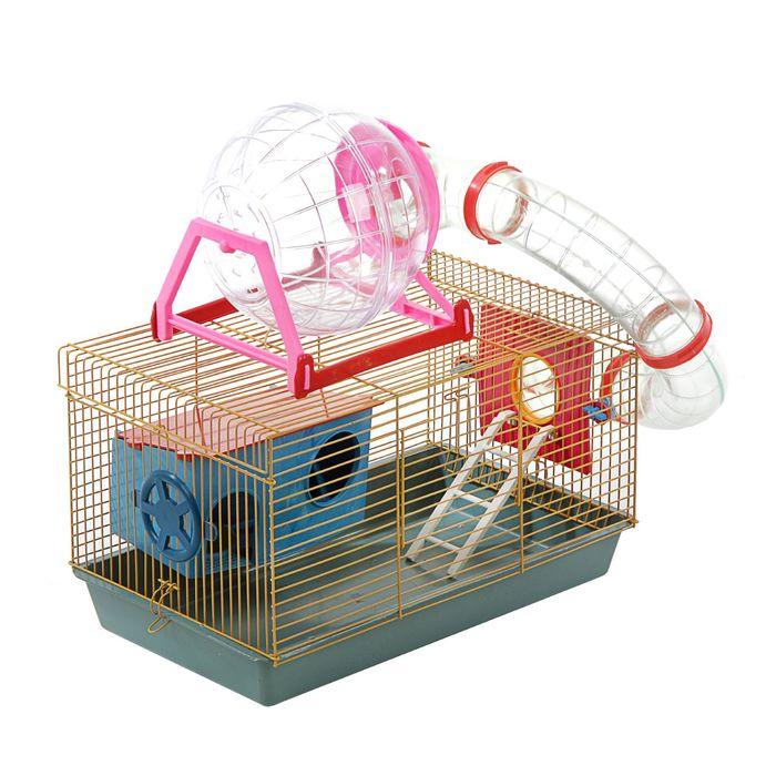 Клетка для грызунов малая с лабиринтом, колесом и домом, 40 x 25 х 22 см, микс цветов