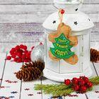 """Мягкая игрушка-подвеска """"Удачи в новом году"""" печенька"""