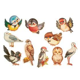 """Комплект украшений """"Веселые птички"""" на скотче, 10 видов, 12 х 12 см"""