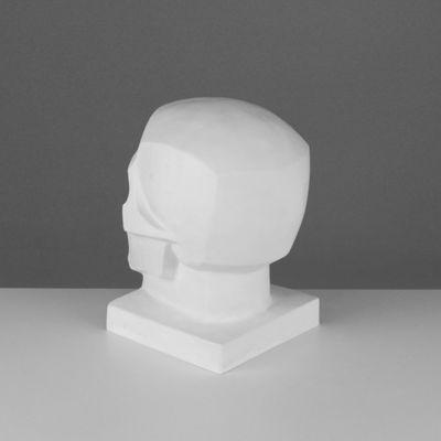 Гипсовая фигура. Череп обобщённых плоскостей, 16 х 17 х 22 см