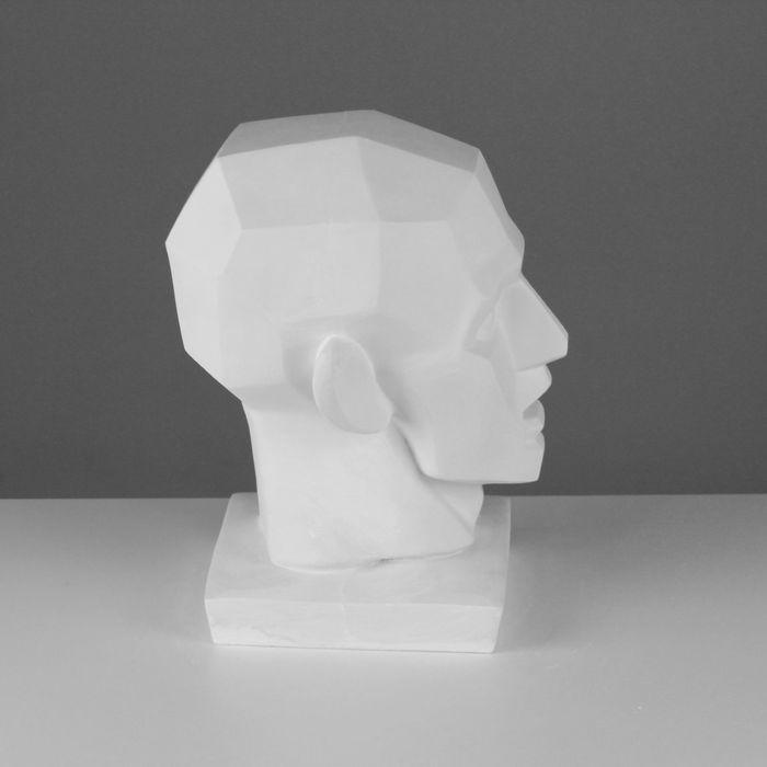 Гипсовая фигура Обрубовка головы по Гудону 20*20*30 см 10-105