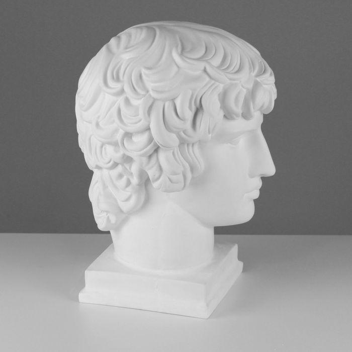 Гипсовая фигура, голова Антиноя «Мастерская Экорше», 25 х 29 х 39 см