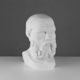 Гипсовая фигура, голова Сократа «Мастерская Экорше», 20 х 20 х 38,5 см