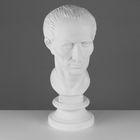 Гипсовая фигура, голова Цезаря «Мастерская Экорше», 20 х 27 х 52 см