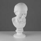 Гипсовая фигура Голова Вольтера 20*26*48 см 10-108