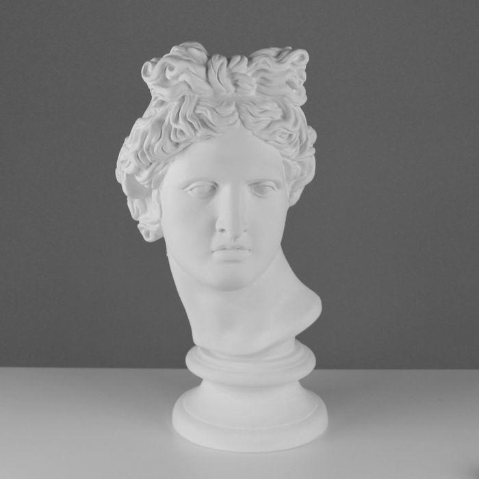 Гипсовая фигура Голова Аполлона Бельведерского 25*29*60 см 10-109