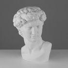 Гипсовая фигура, Давида Микеланджело «Мастерская Экорше», 30 х 28 х 46 см