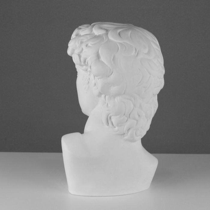 Гипсовая фигура, Давида Микеланджело «Мастерская Экорше», 30х28х46 см
