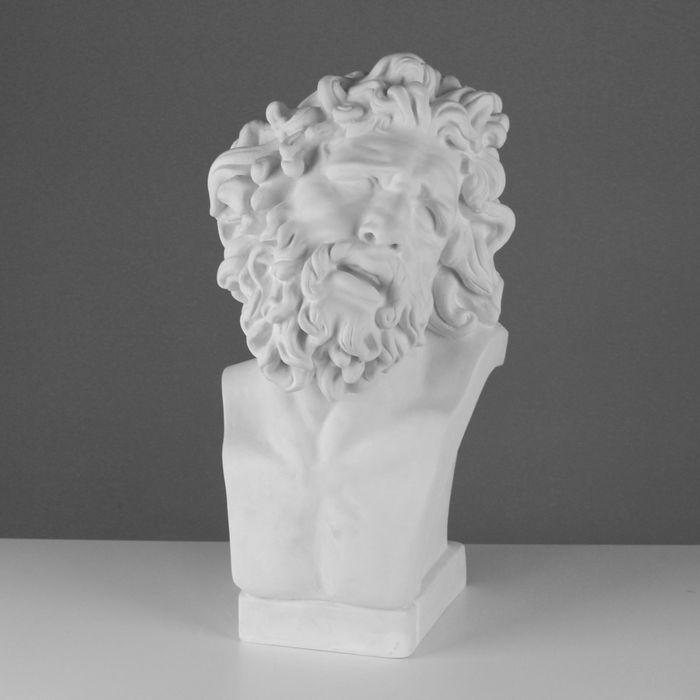 Гипсовая фигура Бюст Лаокоона см 10-149