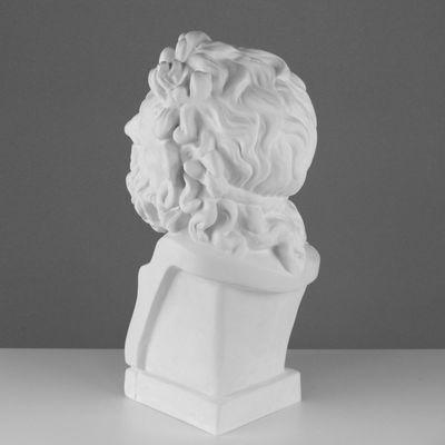 Гипсовая фигура, бюст Лаокоона