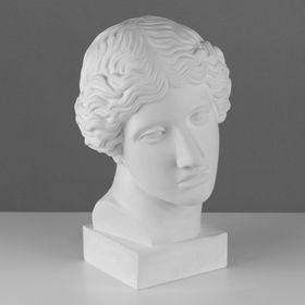 Гипсовая фигура, Голова Амазонки «Мастерская Экорше», 22х25х38 см