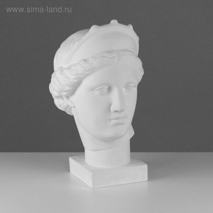 Гипсовая фигура, Голова Венера Капуа (с кокошником) «Мастерская Экорше», 20,5*29*40 см