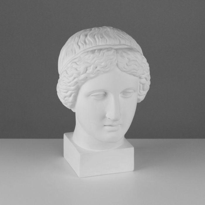 Гипсовая фигура, голова Музы «Мастерская Экорше», 20,5 х 23,5 х 34 см