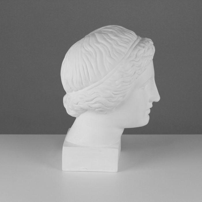 Гипсовая фигура, Голова Музы «Мастерская Экорше», 20,5х23,5х34 см