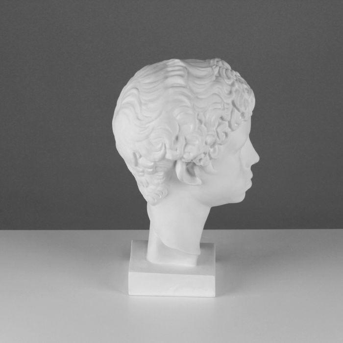 Гипсовая фигура, Голова Мальчик ливиец «Мастерская Экорше», 20х22х34 см