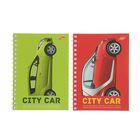 Записная книжка А6, 50 листов на гребне City Car, ВД-лак, МИКС