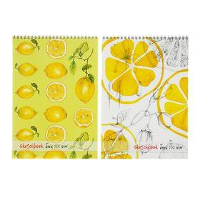 Блокнот для зарисовок А4, 40 листов на гребне Sketchbook, жёсткая подложка, блок офсет 100 г/м²