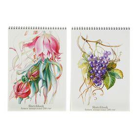 Блокнот для зарисовок А4, 20 листов на гребне Sketchbook, блок акварельная бумага 200 г/м2, жёсткая подложка, МИКС