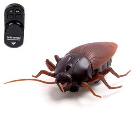 "Beetle RC ""Cockroach"", battery powered light"