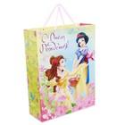 """Пакет ламинированный вертикальный """"С Днем Рождения!"""", Принцессы, 23 х 27 х 11.5 см"""
