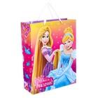 """Пакет ламинированный вертикальный """"С Днем Рождения, принцесса!"""", Принцессы, 23 х 27 х 11.5 см"""