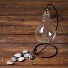 "Флорариум подвесной на подставке ""Лампочка"" - фото 1705025"