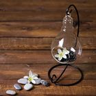 "Флорариум подвесной на подставке ""Лампочка"" - фото 1705026"