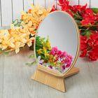 Зеркало настольное, овальное, одностороннее, цвета МИКС