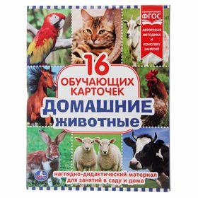 Карточки обучающие «Домашние животные», 16 штук Ош
