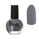Лак для ногтей матовый, 9мл, цвет 11-17 серый