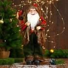 Дед Мороз, в пушистой жилетке, с веточками