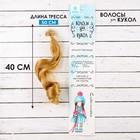 """Волосы - тресс для кукол """"Кудри"""" длина волос 40 см, ширина 50 см, №27"""