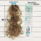 """Волосы - тресс для кукол """"Кудри"""" длина волос 40 см, ширина 50 см, №18Т"""