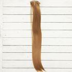 """Волосы - тресс для кукол """"Прямые"""" длина волос 40 см, ширина 50 см, №27А"""